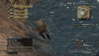 【DDON/ドラゴンズドグマオンライン】これは『水着に見える装備』でしょうか? 『ブリアサマービーチフェスティバル』で黄金ヤシの繊維で夏覚者へ♪