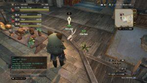 【DDON/ドラゴンズドグマオンライン】新しいマンドラゴラくんを迎えるにあたって高知県のアミューズメントを調査した件。